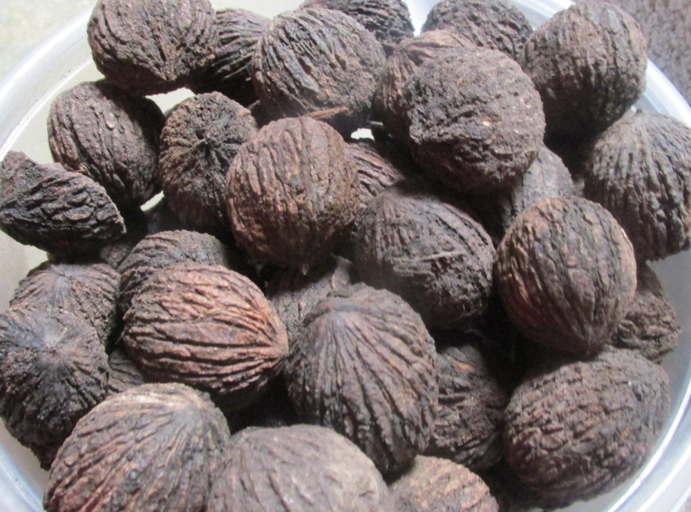 Black-Wallnut-1024x759.jpg