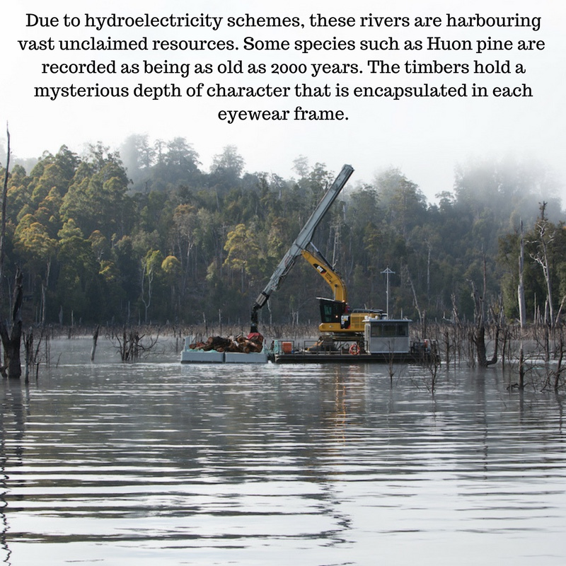 Due to hydroelectricity schemes, these riversare harbouring vast unclaimed resources. Some species such as Huon pine are recorded as being as old as 2000 years. The timbers hold a mysterious depth of character that i.jpg