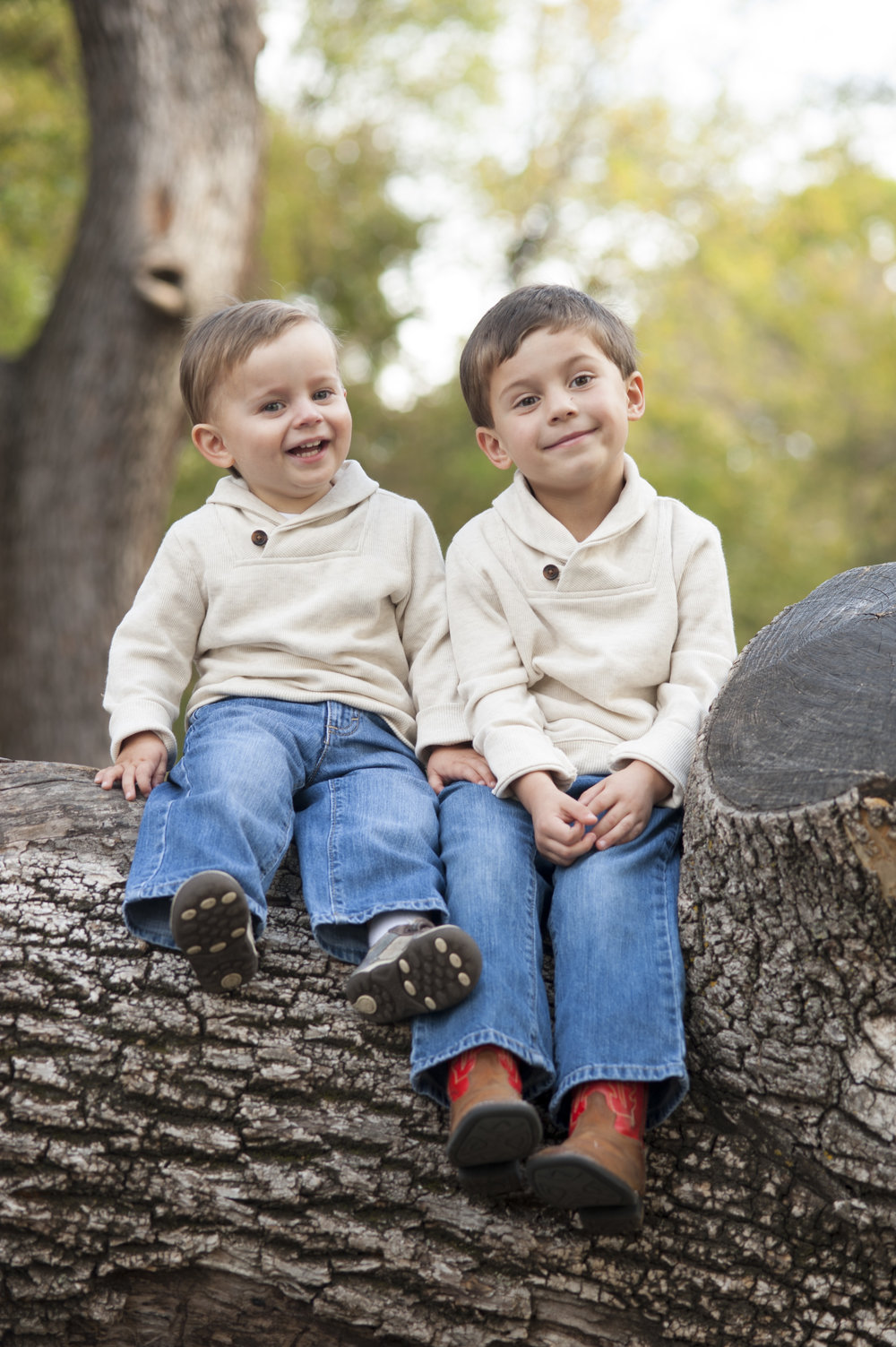Young brothers sitting on a tree.
