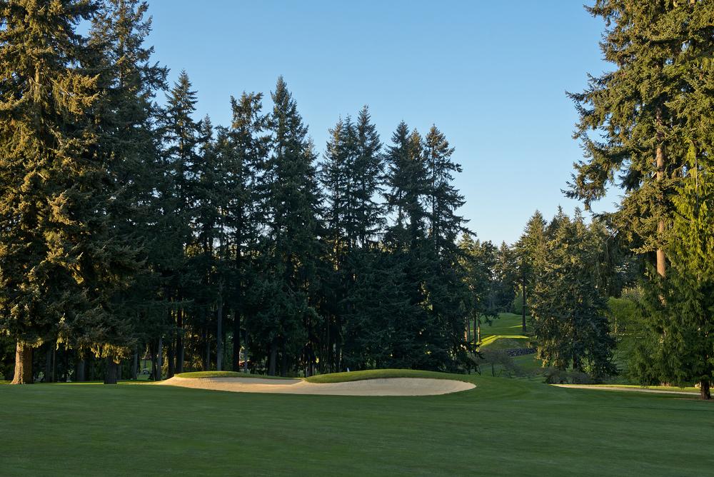 golf course.jpg