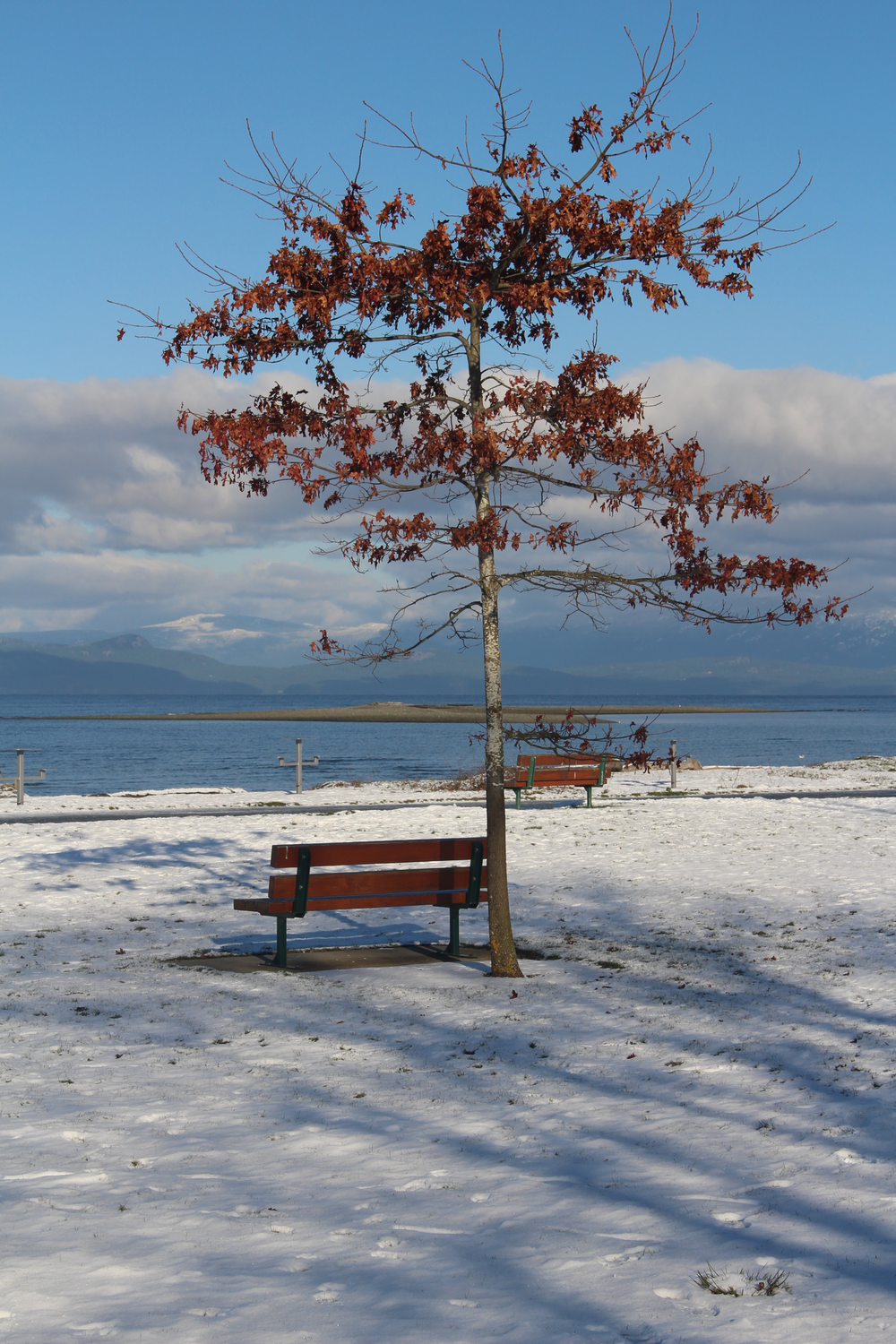 parksvillequalicumbeach_202593312.png