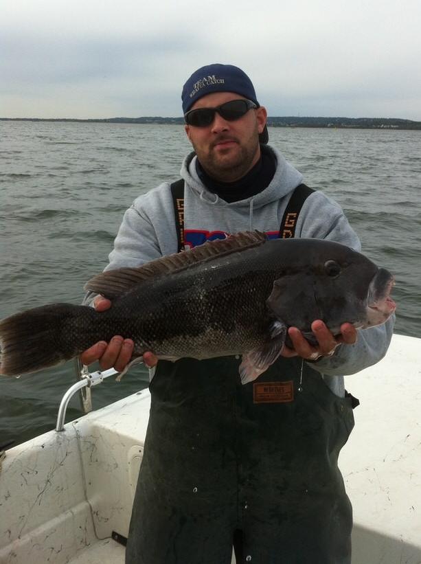 blackfish_kevin1.JPG