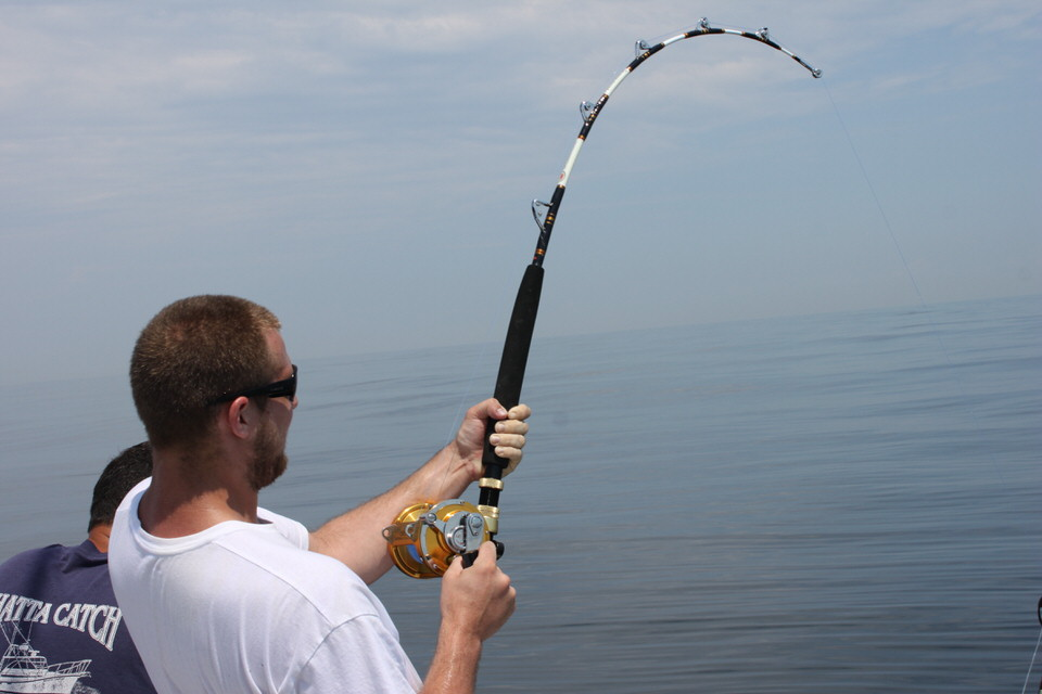 Bent rods whatta catch sport fishing for Saltwater fishing license ny