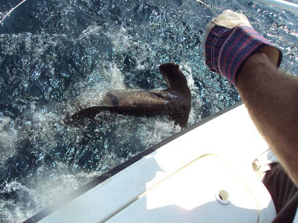 fishing 8-2009 034.JPG