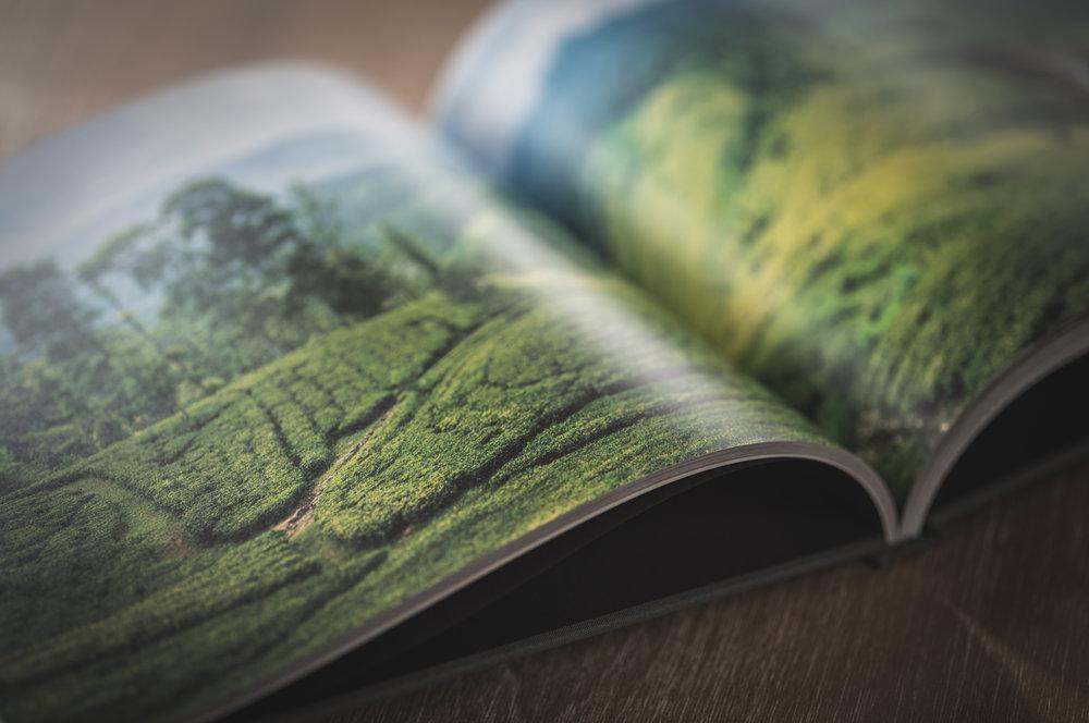 book_26.JPG