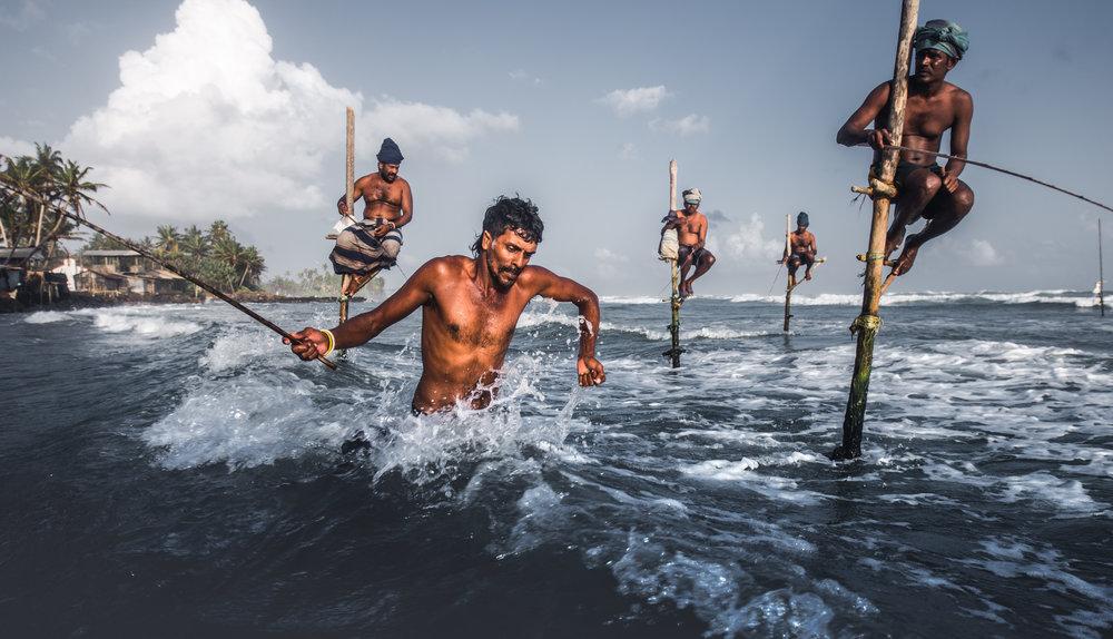 Stilt FishermenLIV.JPG