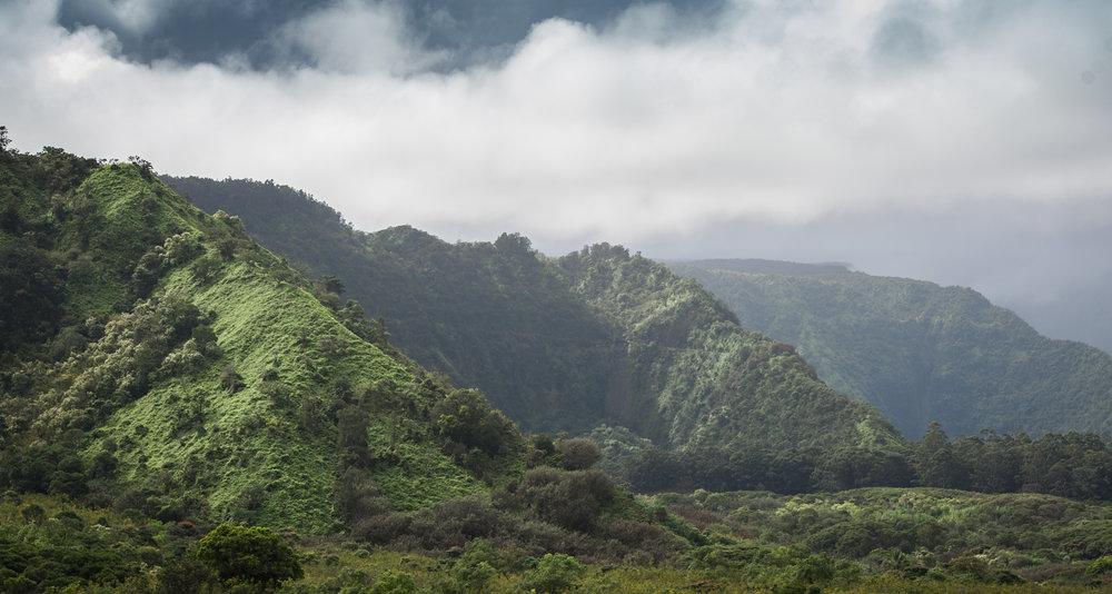 hawaii_final_17.JPG