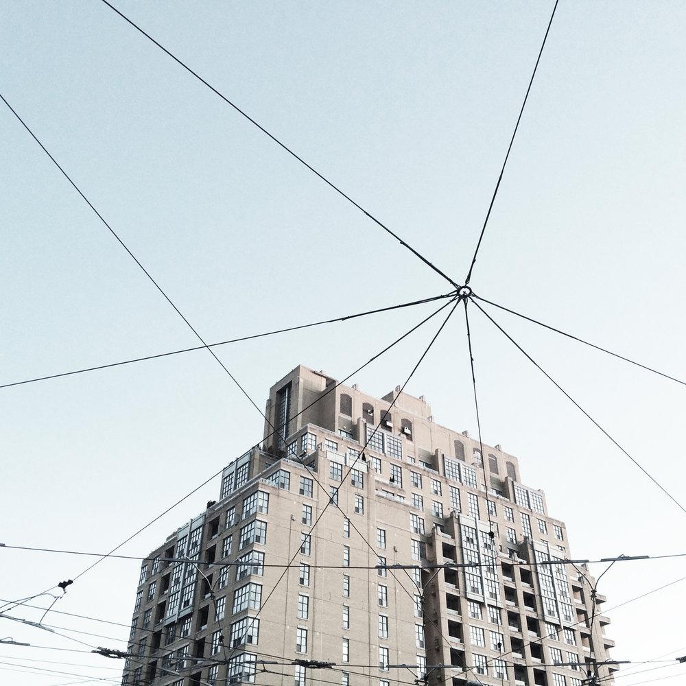 cobweb 3.jpg