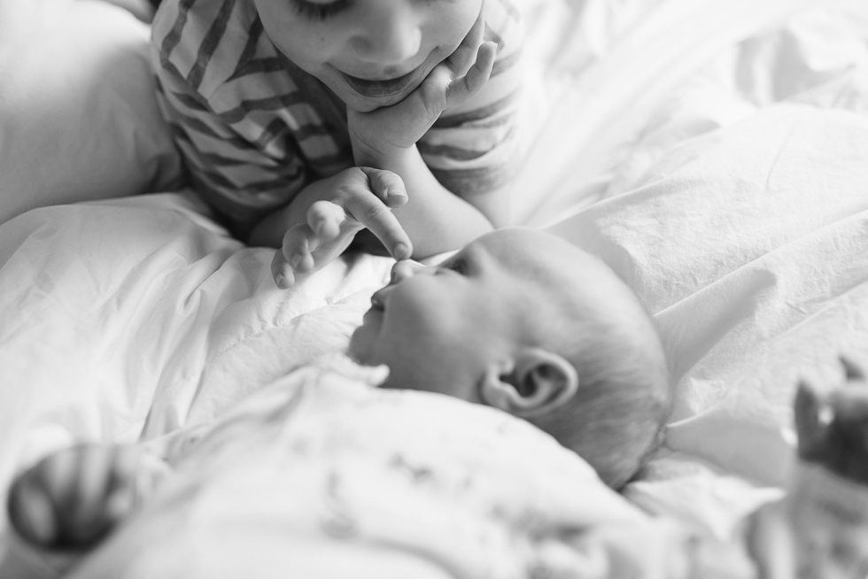 toddler+touching+newborn+baby's+nose+at+home+in+melbourne+newborn+photographer+Jenny+rusby+photography