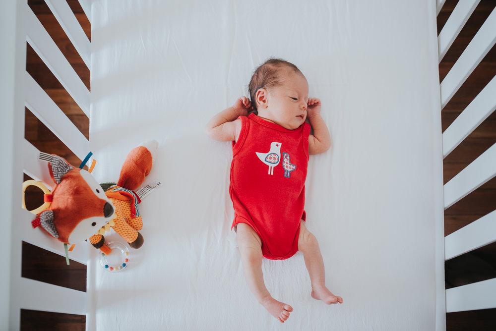 Melborne Newborn Photographer