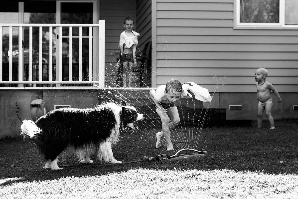 melbourne_family_photographer_children_playing_in_sprinkler_with_dog-1.jpg