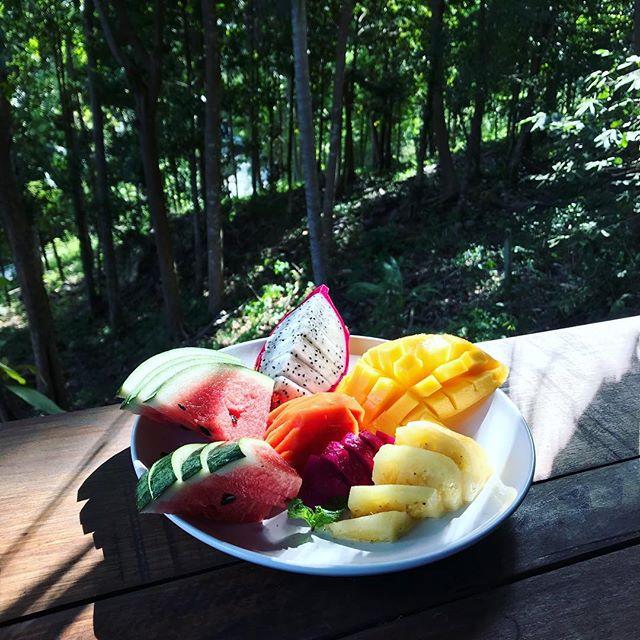 We really should eat more fruit!  #pyramidyogacenter #pyramidyoga #ecstaticdance #vegan #vegetarian #chakra #chakrayoga #yoga #kohphangan #thailand #junglelife #meditate #meditation #health #healing #consciousness  #mindfulness  #wellness #relax #nature #yogaretreat #yogateacher #yogateachertraining #travel