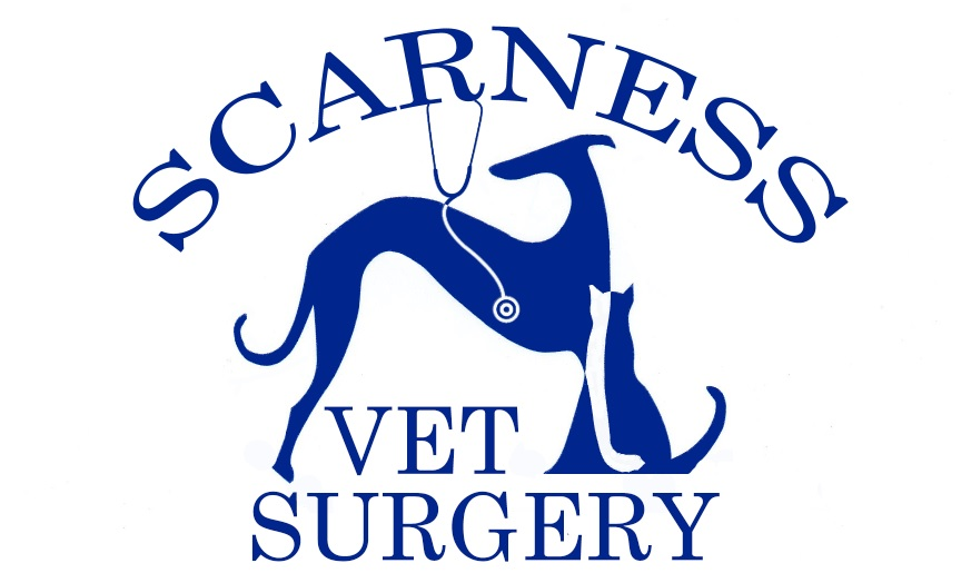 Scarness Vet Surgery