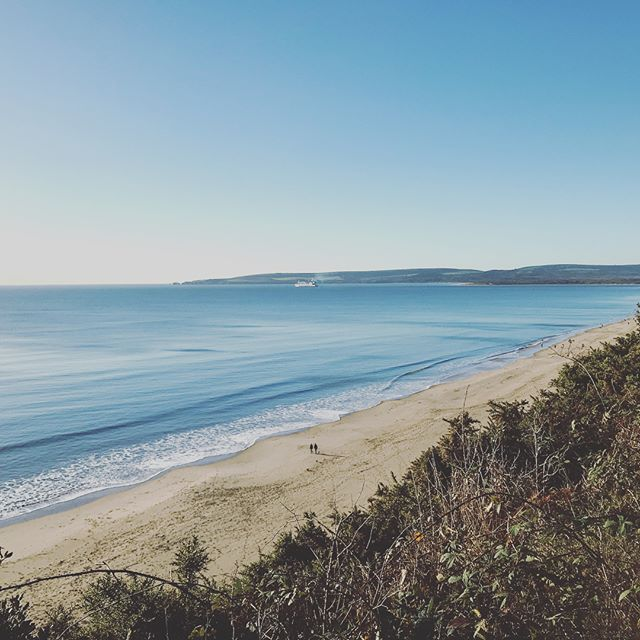 A trip to the coast for a site visit meant waking up to a glorious view this morning #perksofthejob ☀️ #commercialinteriors #dorset #seaview #womeninbusiness