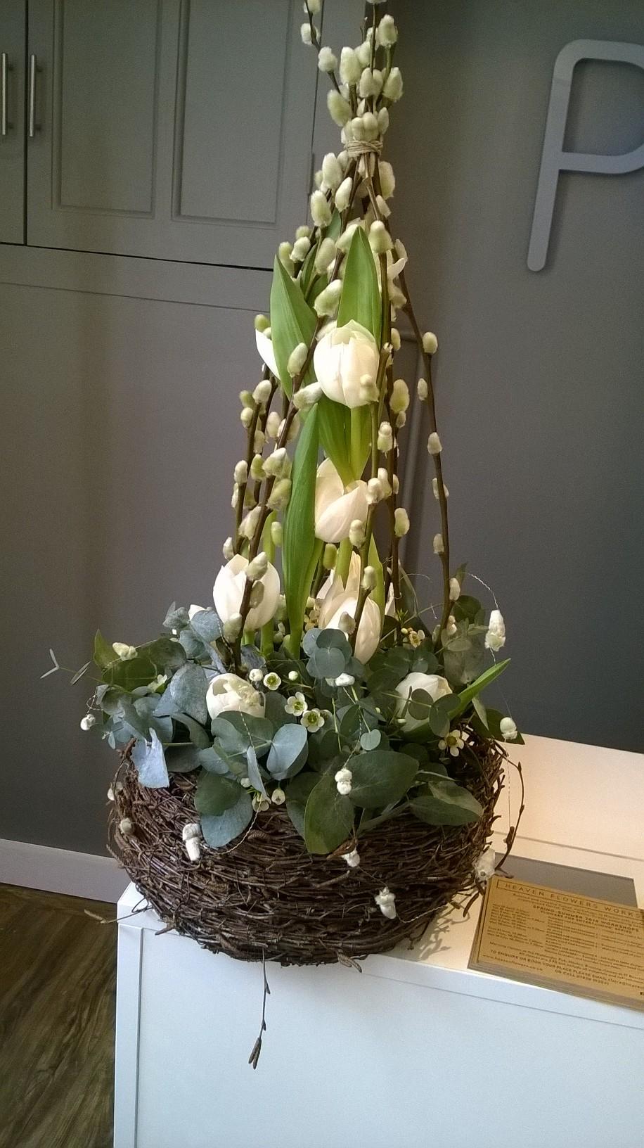 Tulip and birch design.jpg