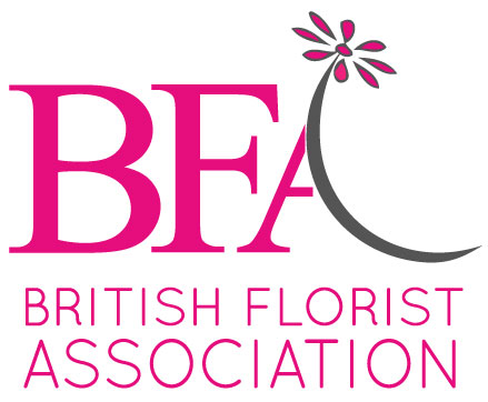 BFA-Logo-with-words-exc.-org-med-size-outlines-white-background.jpg