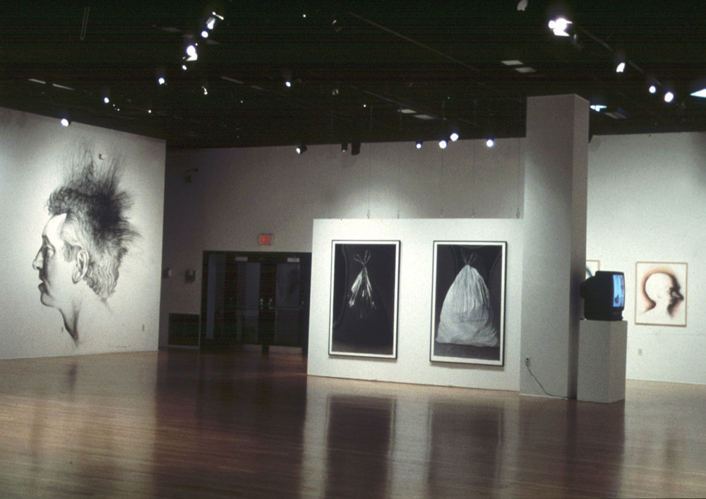 Hed (installation view 2)