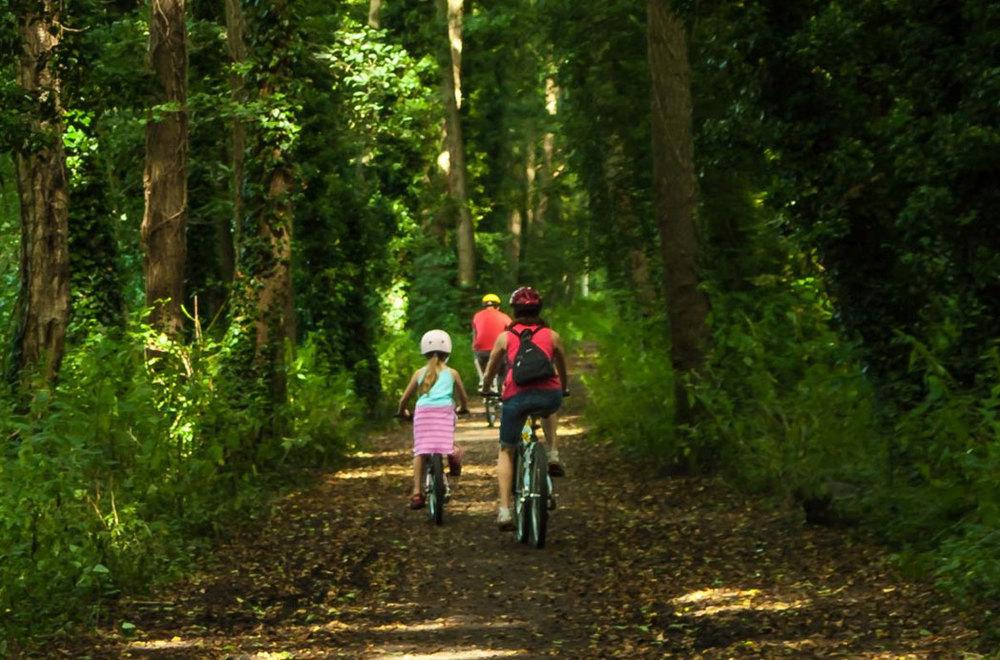 kids_bikes.jpg