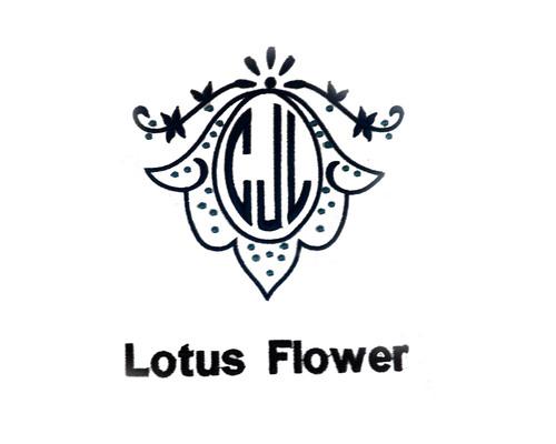 Monogram letter fonts styles charleston sc oconnor lotus flowerg mightylinksfo Gallery