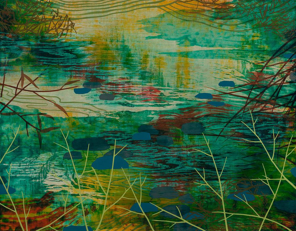 Wetland 51