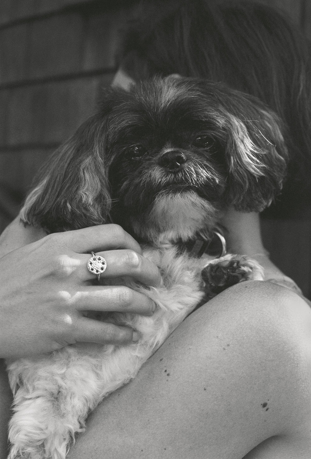 Elvira Piedra_Ethical Gems_Gold_ring_cute dog.jpg