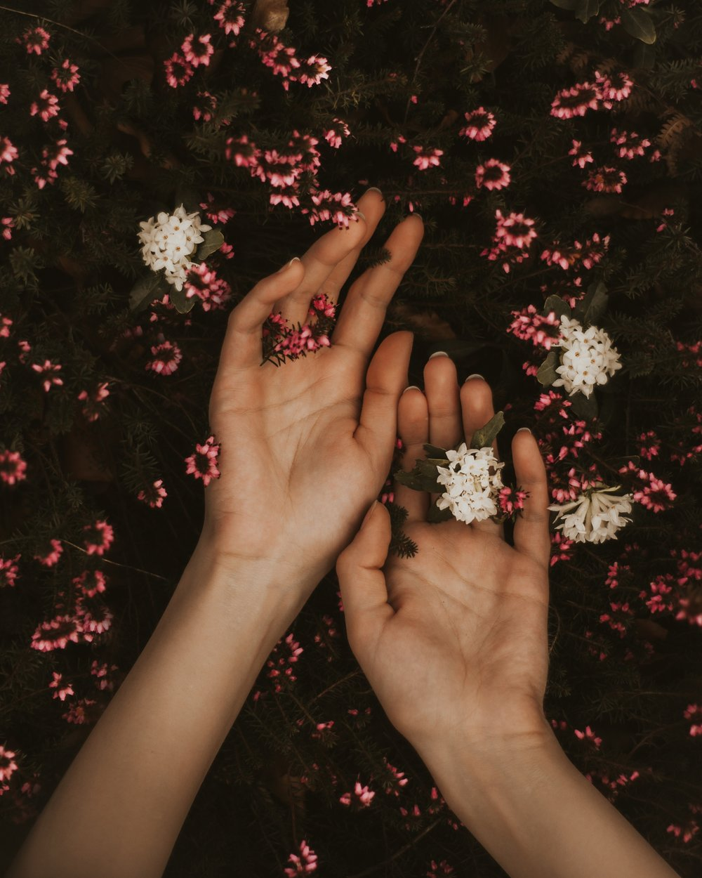 """- The body must be touched with hands of peace, whispered to, reverently anointed, handled as if it is a delicate flower. -Gayle Macdonald """"Medicine Hands"""""""