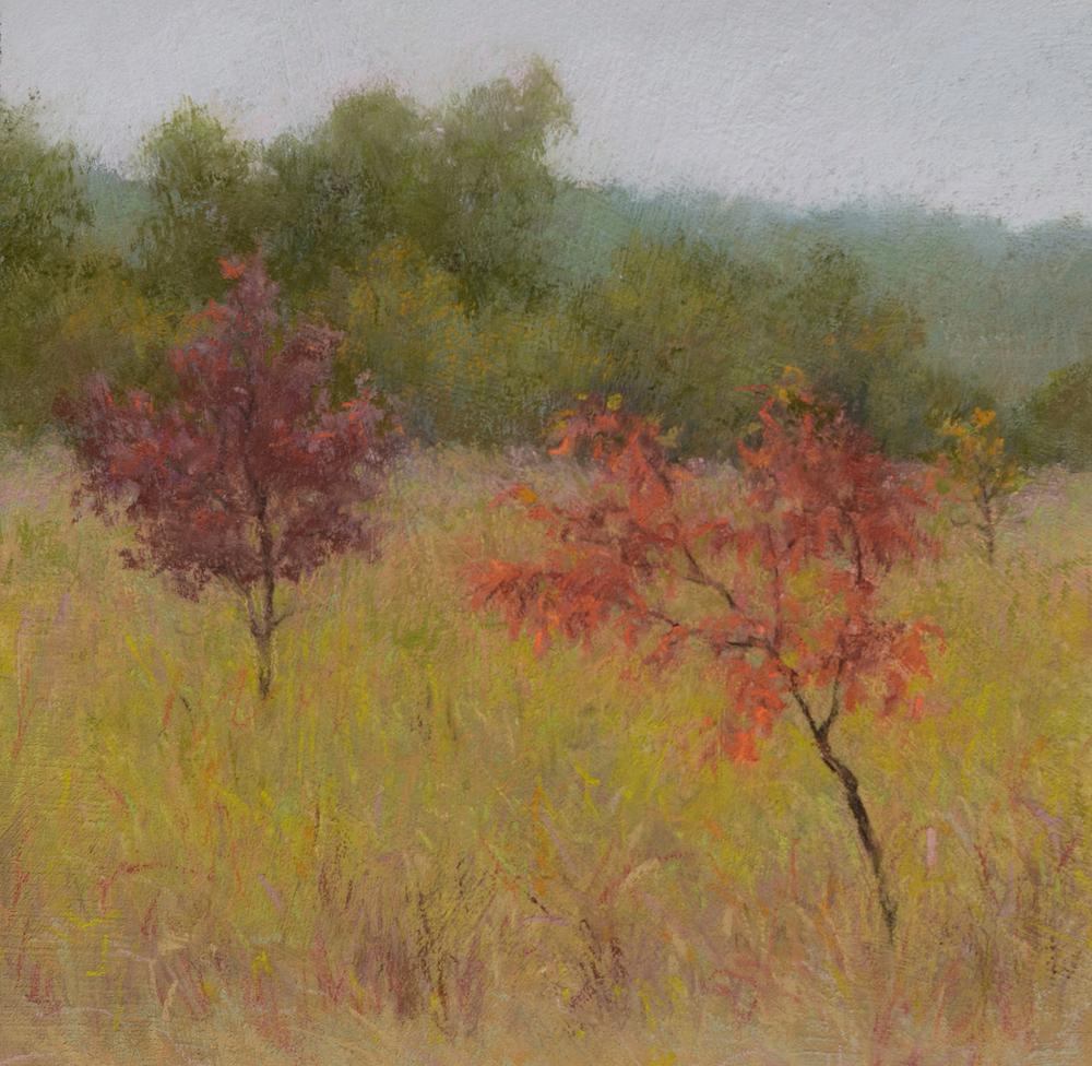 DLaRueMahlke_Autumns Gift_8x8_Pastel_med.jpg