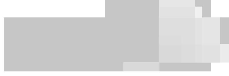 PWC_logo copy.png