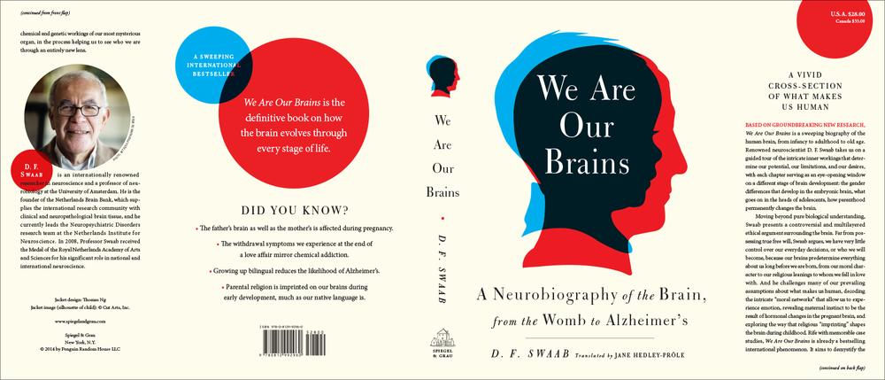 brain-package.png