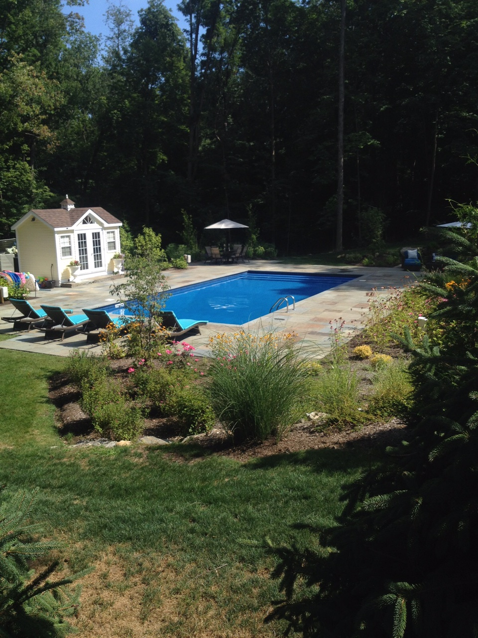 your backyard oasis u2014 brewster pools