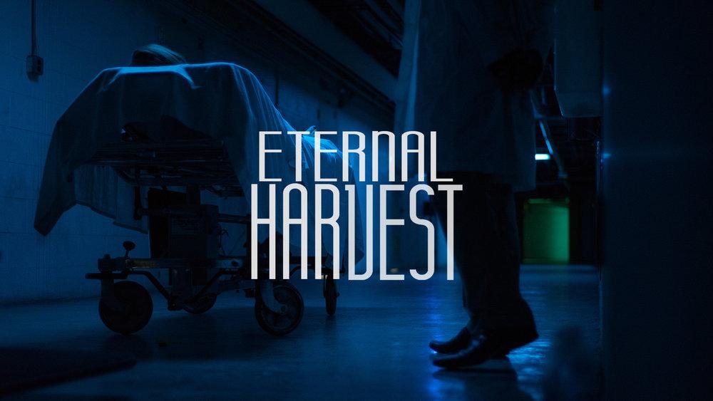 Eternal Harvest-3.jpg