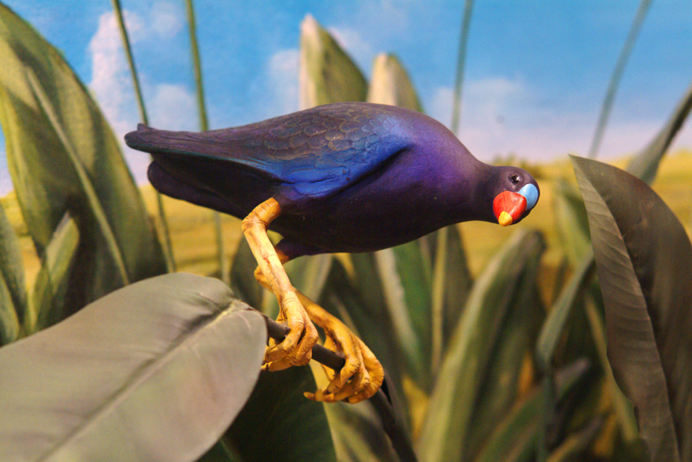 Bird-sculpture.jpg