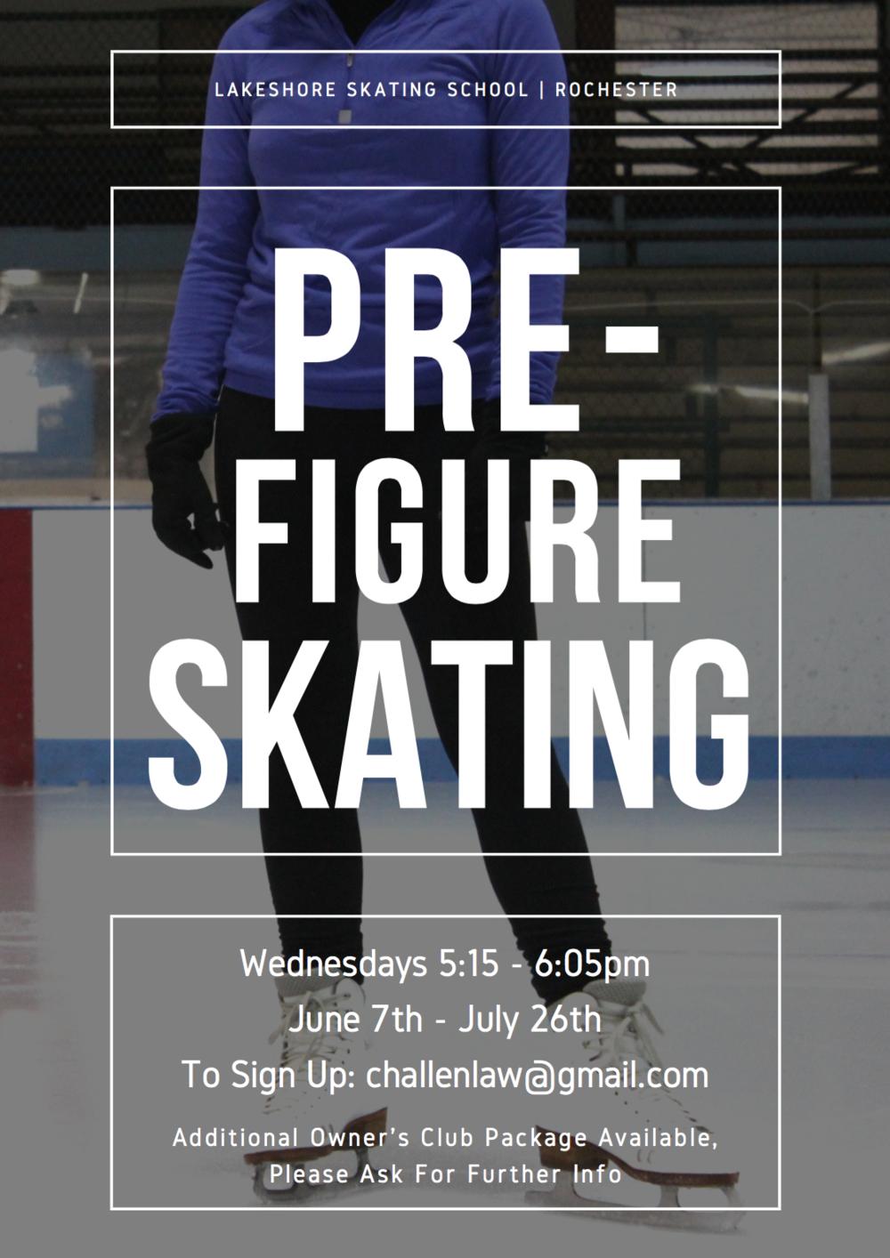 Flyer for Lakeshore Skating School