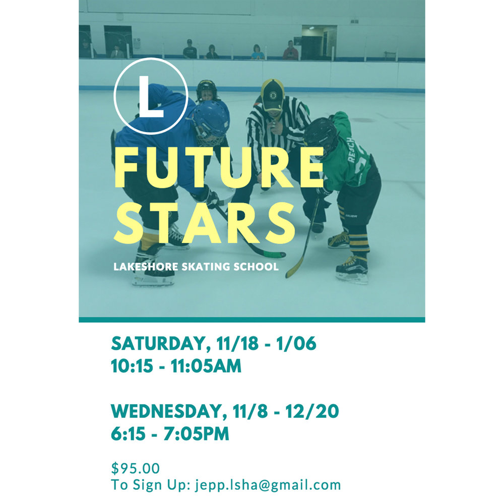 Flyer for Lakeshore Skating School