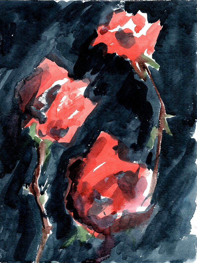 Roses, 2017