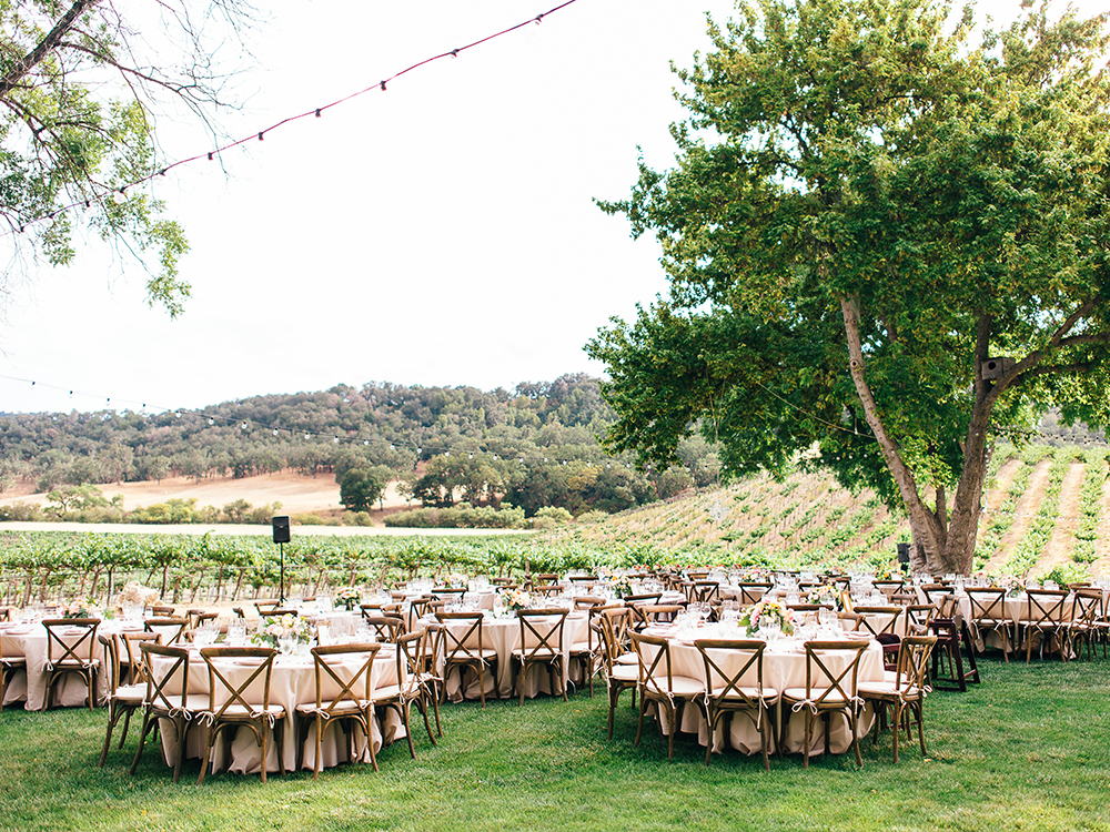 Vineyard reception, Paso Robles Wedding