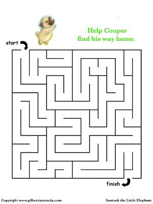 Maze- Cooper.jpg