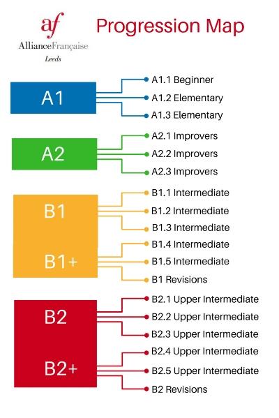 A1.1 Beginner.jpg