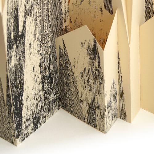 Folding mountain detail 3.jpg