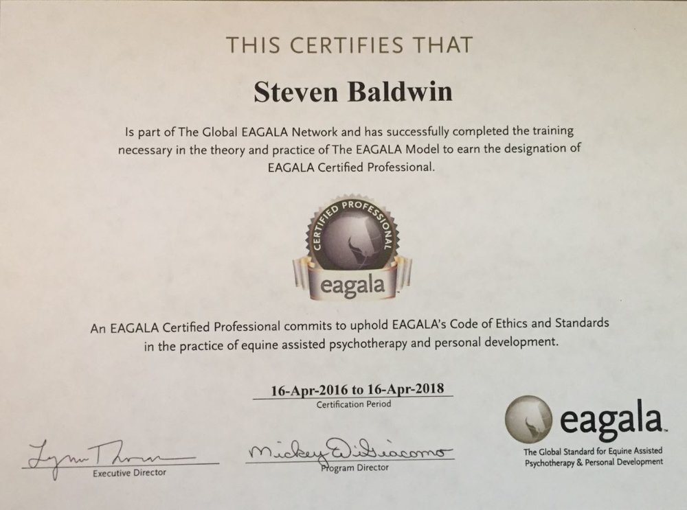 CERTIFIED EAGALA EQUINE MENTAL HEALTH THERAPIST/ EQUINE SPECIALIST
