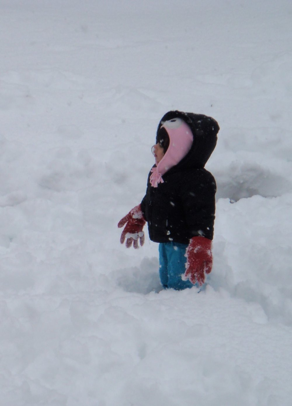 5 Engaging Backyard Winter Activities To Get Em Outside When It S