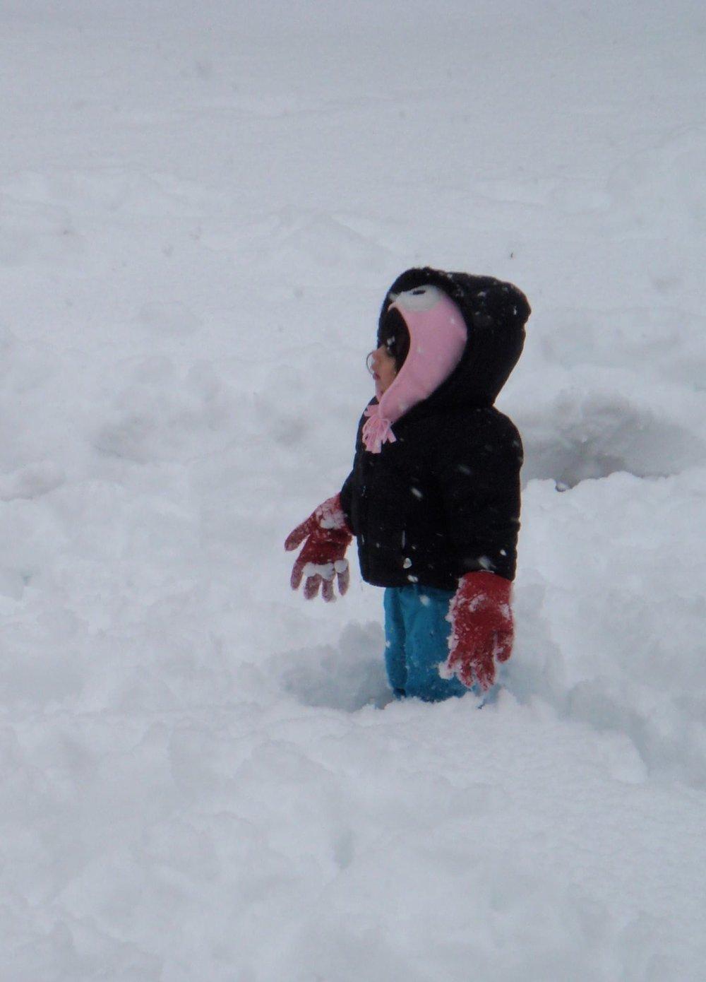 Fun Winter Backyard Activities