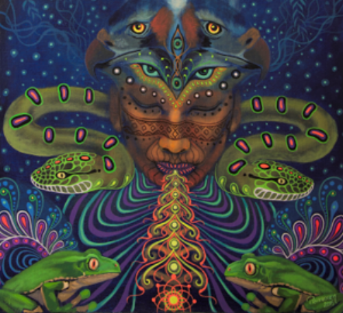 WHAT IS AYAHUASCA?   Also known as the Vine of the Soul, Ayahuasca is an powerful healing Amazonian plant mixture of Banisteriopsis caapi vine and the Chacruna Leaf sought after for its profound healing properties and its ability to induce altered states of consciousness. At our retreat, we are privileged to share this medicine with Shamans who come from the Shipibo tribe, and our very talented heart centered facilitators.