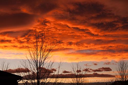 sunset112013.jpg