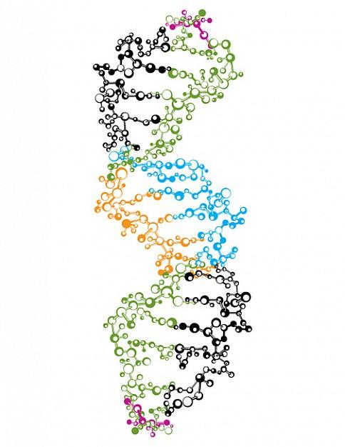 Biocompatible Material