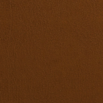 Caramel Latte Leather