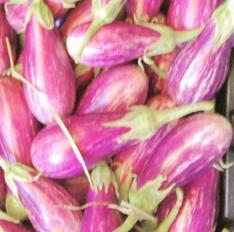 Eggplant: Fairytale