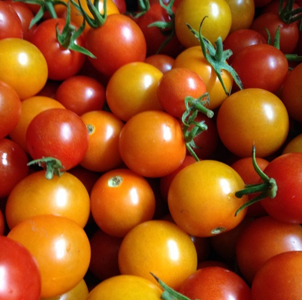 Tomatoes: Cherry