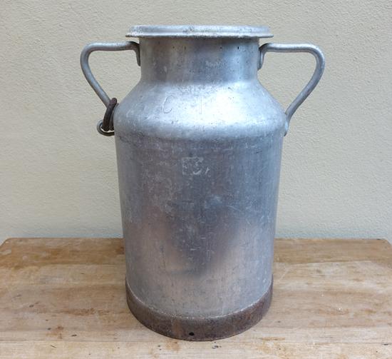 Medium (X1) H: 48cm W: 42cm £10.00