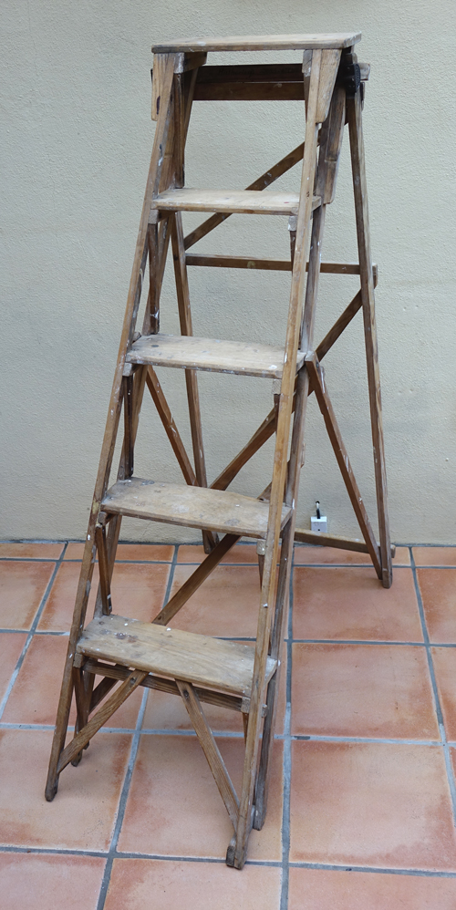 Step Ladder with Detail £15